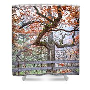 0981 Fall Colors At Starved Rock State Park Shower Curtain