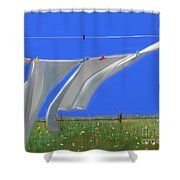 Cormorants At The Bay  Shower Curtain
