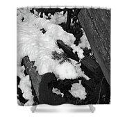 Snowy Wood  Shower Curtain