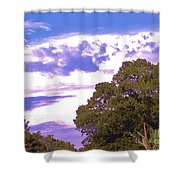 05222012003 Shower Curtain