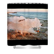 1-1-18--5790 Don't Drop The Crystal Ball Shower Curtain