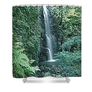 1b6351 Diamond A Waterfall Shower Curtain