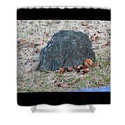 1-20-18--7452 Don't Drop The Crystal Ball Shower Curtain