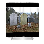 1-20-18--7457 Don't Drop The Crystal Ball Shower Curtain