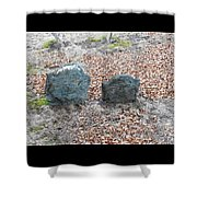 1-20-18--7466 Don't Drop The Crystal Ball Shower Curtain