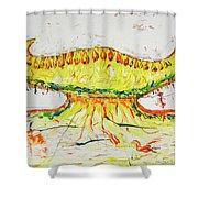28 Shower Curtain