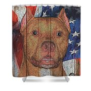 8355443 Shower Curtain