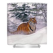 A Blur Of Tiger Shower Curtain