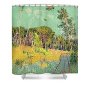 A Clearing In The Forest Shower Curtain