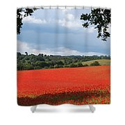 A Field Of Red Poppies Shower Curtain