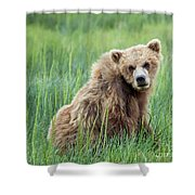 A Glance Back Shower Curtain