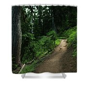 A Path In Paradise Shower Curtain