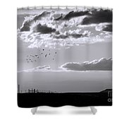 A Quiet World Shower Curtain