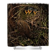 A Visit To The Nest Shower Curtain