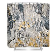 Abstract Texture Old Plaster Shower Curtain
