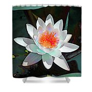 Abstract Waterlily Shower Curtain