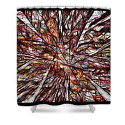 Abstraction 3101 Shower Curtain