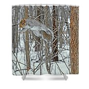 Acrobat Of The Forest Shower Curtain