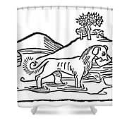 Aesop: Dog & His Shadow Shower Curtain