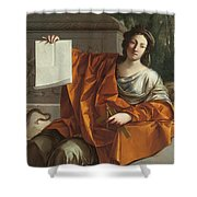 Allegory Of Geometry Shower Curtain