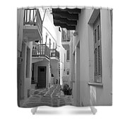 Alley Way Shower Curtain