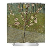 Almond Tree In Blossom Arles, April 1888 Vincent Van Gogh 1853 - 1890 Shower Curtain