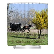 Amish Buggy Late Fall Shower Curtain