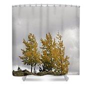 An Ode To September Shower Curtain