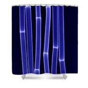 An X-ray Of Bamboo Shower Curtain