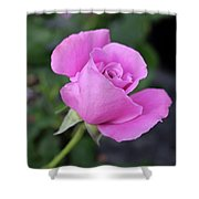 Angel Face Shower Curtain
