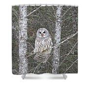 Angel Owl Shower Curtain