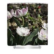 Angelique Peony Tulips Shower Curtain