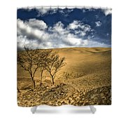 Argentina Desert Landscape Shower Curtain
