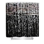 Arizona Falls Shower Curtain