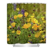 Arizona Wildflowers  Shower Curtain