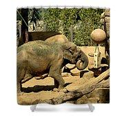 Asian Elephant Shower Curtain