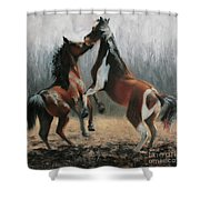 At Play Shower Curtain