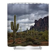 At The Base Of The Mountain Shower Curtain