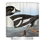 Audubon Duck Shower Curtain