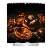 Autumn 2016 Shower Curtain