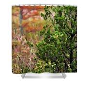 Autumn Colors 20 Shower Curtain