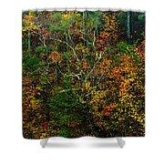 Autumn Hillside Blue Ridge Parkway Shower Curtain