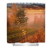 Autumn Road Shower Curtain