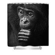 Baby Bonobo Portrait Shower Curtain