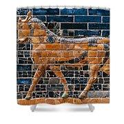 Babylon: Ishtar Gate 600 B.c Shower Curtain