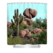 Balancing Act In The Arizona Desert 2 Shower Curtain