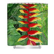 Balinese Heliconia Rostrata Shower Curtain