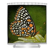Baltimore Checkerspot Shower Curtain