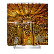 Basilica De Guadalupe 3 Shower Curtain