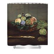 Basket Of Fruit Shower Curtain